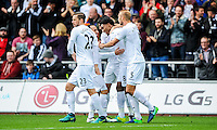 Leroy Fer celebrates his goal at The Liberty Stadium on October 1, 2016 in Swansea, Wales, putting the Swans one-up.