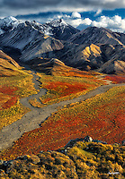 Honorable Mention - Landscape: Alaska Fire