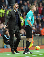 Manager Tim Sherwood of Aston Villa has a go at the linesman during the Barclays Premier League match between Aston Villa v Swansea City played at the Villa Park Stadium, Birmingham on October 24th 2015