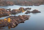 Granite rocks and golden cottonwoods (Populus fremontii)during autumn at Watson Lake, Arizona, USA