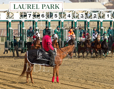 Laurel Park January 4, 2012