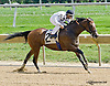 Moments Notiz winning at Delaware Park on 9/1/14
