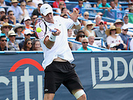Washington, DC - August 9, 2015: John Isner (USA) hits a forehand shot during the ATP men's final at the Citi Open held at the Rock Creek Park Tennis Center in Washington, DC  August 9, 2015.  (Photo by Elliott Brown/Media Images International)
