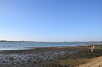 Shotley foreshore, River Stour estuary part of the Harwich Haven harbour, Suffolk UK Nov 2018