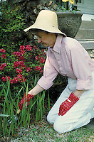 Woman gardening in front yard of home. Birmingham, Alabama.