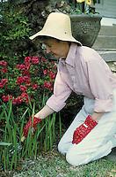 Woman gardening in front yard of home. Birmingham, Alabama.