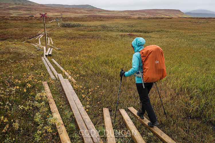 Single hiker on section of trail under repair, between Aigert and Serve huts, Kungsleden trail, Lapland, Sweden