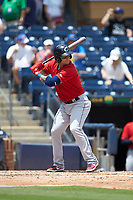 Brandon Barnes (9) of the Columbus Clippers at bat against the Durham Bulls at Durham Bulls Athletic Park on June 1, 2019 in Durham, North Carolina. The Bulls defeated the Clippers 11-5 in game one of a doubleheader. (Brian Westerholt/Four Seam Images)