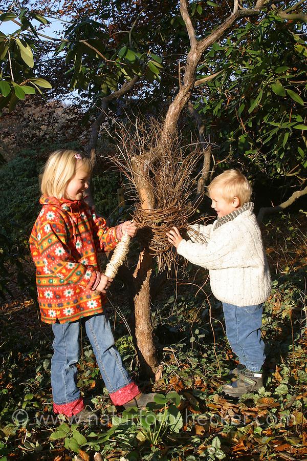 Kinder bauen aus Reisig, Ästchen ein Nest an einem Stamm, Unterschlupf für Tiere, Nistgelegenheit z.B. für Zaunkönig