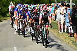 The peloton with Austrian National Champion Lukas Postlberger (AUT) Bora-Hansgrohe on the front during Stage 13 of the 2018 Tour de France running 169.5km from Bourg d'Oisans to Valence, France. 20th July 2018. <br /> Picture: ASO/Alex Broadway | Cyclefile<br /> All photos usage must carry mandatory copyright credit (© Cyclefile | ASO/Alex Broadway)