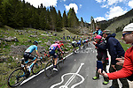 The breakaway group in action during Stage 20 of the 2019 Giro d'Italia, running 194km from Feltre to Croce d'Aune-Monte Avena, Italy. 1st June 2019<br /> Picture: Fabio Ferrari/LaPresse | Cyclefile<br /> <br /> All photos usage must carry mandatory copyright credit (© Cyclefile | Fabio Ferrari/LaPresse)