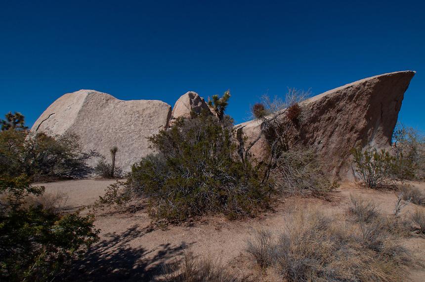 Indian Wave, Joshua Tree National Park, California, US