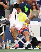 FLUSHING NY- AUGUST 29: Stan Wawrinka Vs Fernando Verdasco on Arthur Ashe Stadium at the USTA Billie Jean King National Tennis Center on August 30, 2016 in Flushing Queens. Credit: mpi04/MediaPunch
