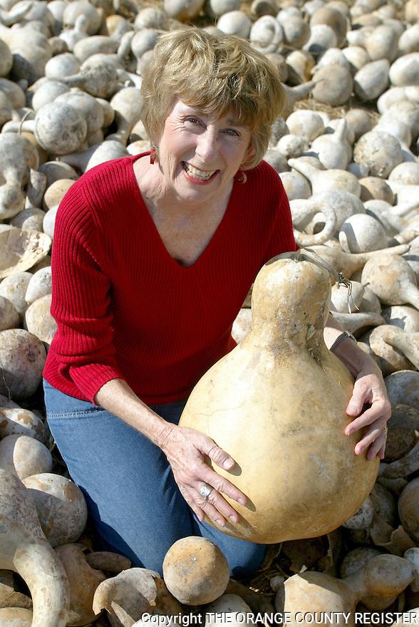 Lynne Everett - Gourd Artist.  Portfolio only.