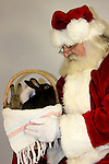 Santa Claus looking into a basket full of bunny rabbits