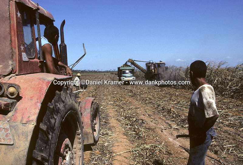 Sugarcane production in Cuba is one of the leading sources of income for the island nation.
