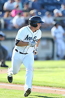 Luke Guarnaccia #25 of the Everett AquaSox runs to first base during a game against the Boise Hawks at Everett Memorial Stadium on July 25, 2014 in Everett, Washington. Everett defeated Boise, 3-1. (Larry Goren/Four Seam Images)