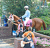 Grecian Prince before The Strike Your Colors Stakes at Delaware Park on 8/5/15
