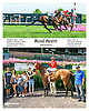 Road Agent winning at Delaware Park on 7/13/15