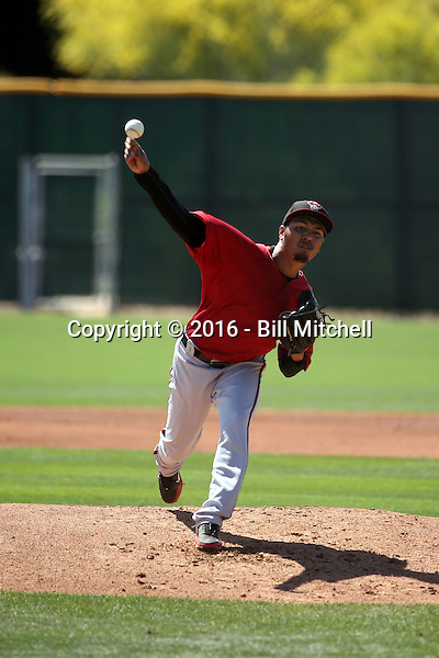 Carlos Hernandez - Arizona Diamondbacks 2016 spring training (Bill Mitchell)