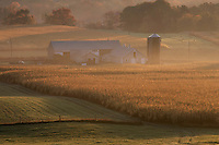 farm at sunrise, Cumberland, RI