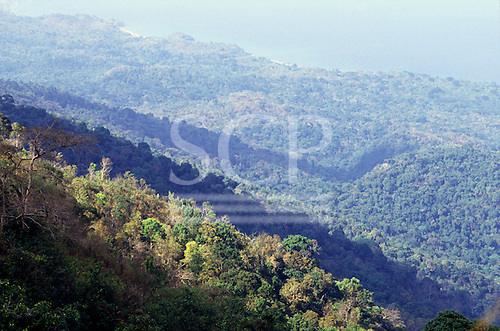 Mahale, Tanzania, Africa. View down the forested mountain range to lake Tanganyika.