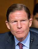 """United States Senator Richard Blumenthal (Democrat of Connecticut) listens to testimony before the US Senate Committee on the Judiciary Subcommittee on Crime and Terrorism hearing titled """"Russian Interference in the 2016 United States Election"""" on Capitol Hill in Washington, DC on Monday, May 8, 2017.<br /> Credit: Ron Sachs / CNP<br /> (RESTRICTION: NO New York or New Jersey Newspapers or newspapers within a 75 mile radius of New York City)"""