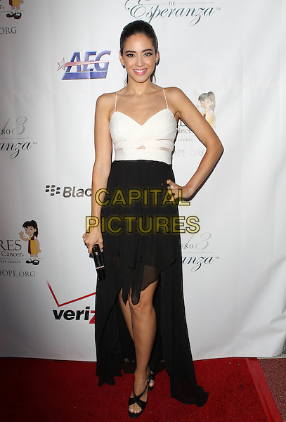 Edy Ganem<br /> The Padres Contra El Cancer 13th annual 'El Sueno De Esperanza' Gala at Club Nokia in Los Angeles, California, USA.<br /> September 24th, 2013<br /> full length black white top skirt dress hand on hip<br /> CAP/ADM/KB<br /> &copy;Kevan Brooks/AdMedia/Capital Pictures