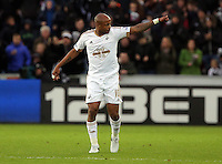 Andre Ayew of Swansea celebrates his goal during the Barclays Premier League match between Swansea City and Bournemouth at the Liberty Stadium, Swansea on November 21 2015