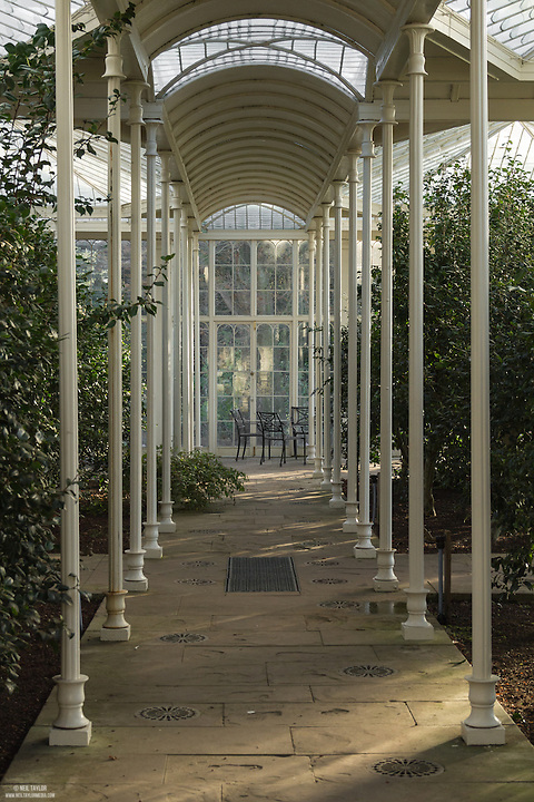 The Camellia House at Wollaton Hall, Nottingham