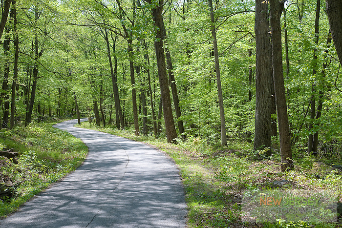 Mountain Road, Stokes State Forest, Sussex County, New Jersey