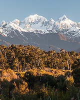 Two highest New Zealand peaks, Mt. Cook 3754m (right) and Mt. Tasman 3497m (left), Westland Tai Poutini National Park, West Coast, UNESCO World Heritage Area, South Westland, New Zealand, NZ
