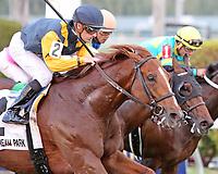 HALLANDALE BEACH, FL - APRIL 01:  #2 Sadler's Joy   wth jockey Julien Leparoux on board, wins the Pan American Stakes (Grade II) at Gulfstream Park on April 01, 2017 in Hallandale Beach, Florida. (Photo by Liz Lamont/Eclipse Sportswire/Getty Images)