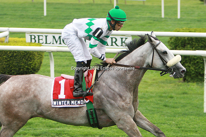 Favorite Winter Memories with Eddie Castro aboard wins the Grade III Beaugay Stakes for fillies & mares, 3-year old & up, 1 1/16 mile on the Widener turf.   Trainer James J. Toner.  Owner Phillips Racing Partnership.