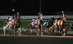 Standardbreds - Meadowlands