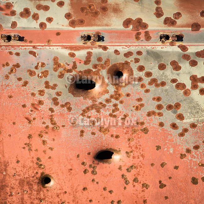 Bullet-holes detail, rusted and abandoned car body, Warm Springs, Nev.