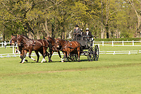 Norman Schroeder, german driver of his four in hand horses, at the International Dressage driving competition at Hrebecin Kladruby n. Laben, The Czech Republic, Europe