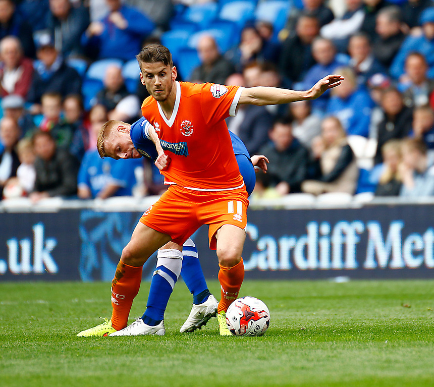 Blackpool's Andrea Orlandi battles with Cardiff City's Eoin Doyle<br /> <br /> Photographer Simon King/CameraSport<br /> <br /> Football - The Football League Sky Bet Championship - Cardiff City v Blackpool - Saturday 25th April 2015 - Cardiff City Stadium - Cardiff<br /> <br /> &copy; CameraSport - 43 Linden Ave. Countesthorpe. Leicester. England. LE8 5PG - Tel: +44 (0) 116 277 4147 - admin@camerasport.com - www.camerasport.com