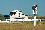 White barn, white fiberglass horse on pole, white rail fences, rural Okla.