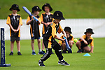 NELSON, NEW ZEALAND - Superstar Incrediball Cricket. Saxton Oval, Nelson, New Zealand. Saturday 27 October 2018. (Photo by Chris Symes/Shuttersport Limited)
