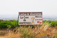 La Cave de Montpeyroux - the local cooperative. Montpeyroux. Languedoc. France. Europe.