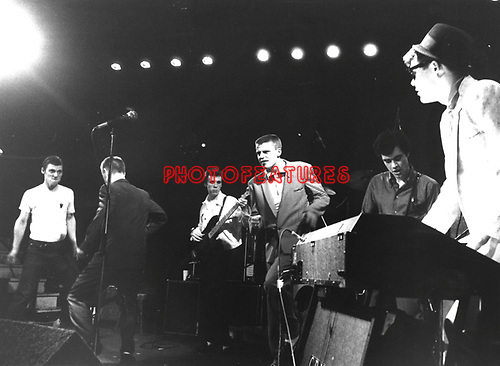Madness 1980 at the Whisky A Go Go. © Chris Walter.