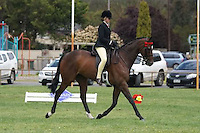 Champion Hack Over 16HH