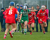 2016 02 Minor Camogie