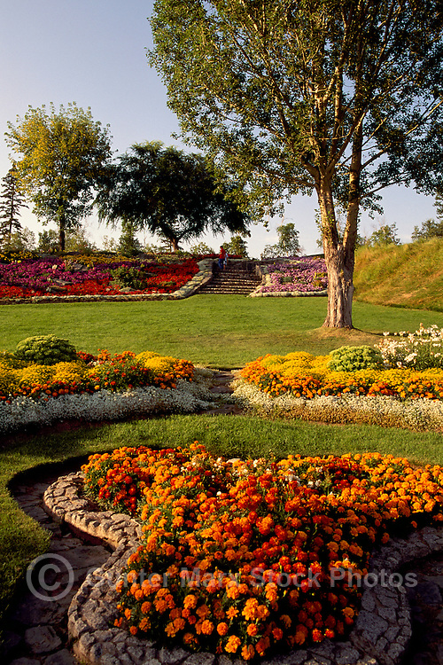 Prince George, BC, British Columbia, Canada - Flowers blooming in Flower Gardens in Connaught Hill Park, Summer
