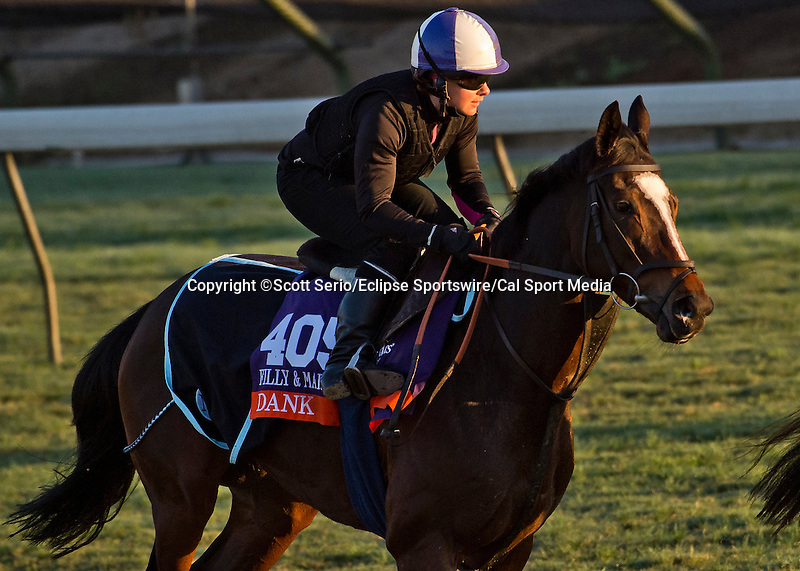 October 28, 2014:  Dank, trained by Michael Stoute, exercises in preparation for the Breeders' Cup Filly & Mare Turf at Santa Anita Race Course in Arcadia, California on October 28, 2014. Scott Serio/ESW/CSM