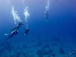 Divers rise of the reef, returning to the waiting dive boats after a morning dive to see thresher sharks at Monad Shoal.  (Above Monad Shoal, near Malapascua Island, Central Visayas, the Philippines.)