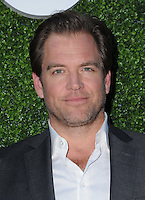 10 August 2016 - West Hollywood, California. Michael Weatherly. 2016 CBS, CW, Showtime Summer TCA Party held at Pacific Design Center. Photo Credit: Birdie Thompson/AdMedia