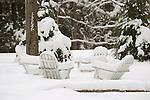 Four Adirondack chairs in snowy backyard.