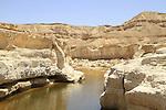 Israel, Negev, Zin waterholes in Wadi Zin